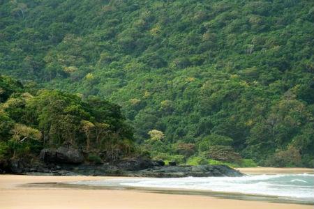 ベトナムのコンダオ島 世界で最も魅力的な島として選出
