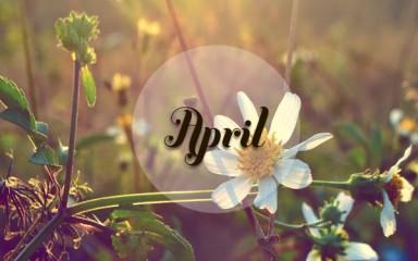 四月感悟人生