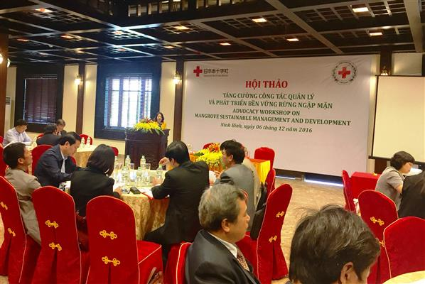 Vietnam unterstützt nachhaltige Entwicklung von Mangrovenwäldern