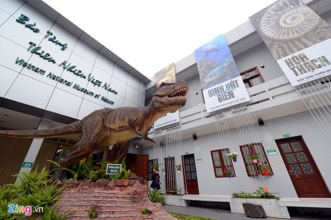 Посещение первого музея природы во Вьетнаме