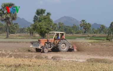干ばつに対応する南部メコンデルタの農民