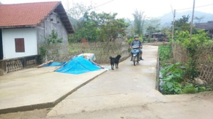 バックカン省における新農村作り