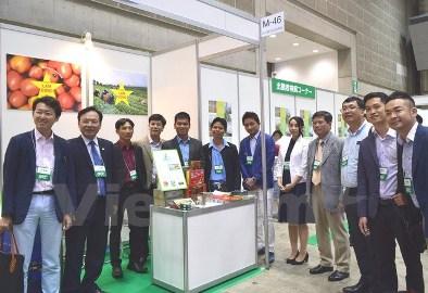 日本、ラムドン省の農業発展を支援