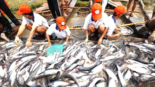 Vietnam targets to expand exports in 2012