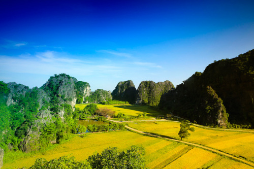 Tam Coc-Bich Dong's charming scenery