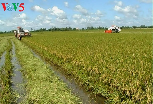 Mekong Delta's agriculture ahead of integration challenges