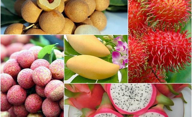 ベトナムのフルーツの価値向上