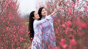 越南南北两地欢度新春