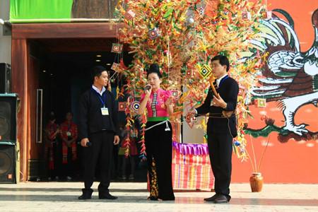 在越南民族学博物馆体验西北文化