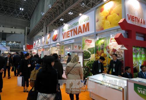 红心火龙果正式进入日本市场