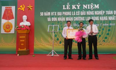Vitality of Dai Phong
