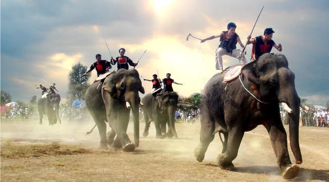 Elephant taming job of the M'Nong