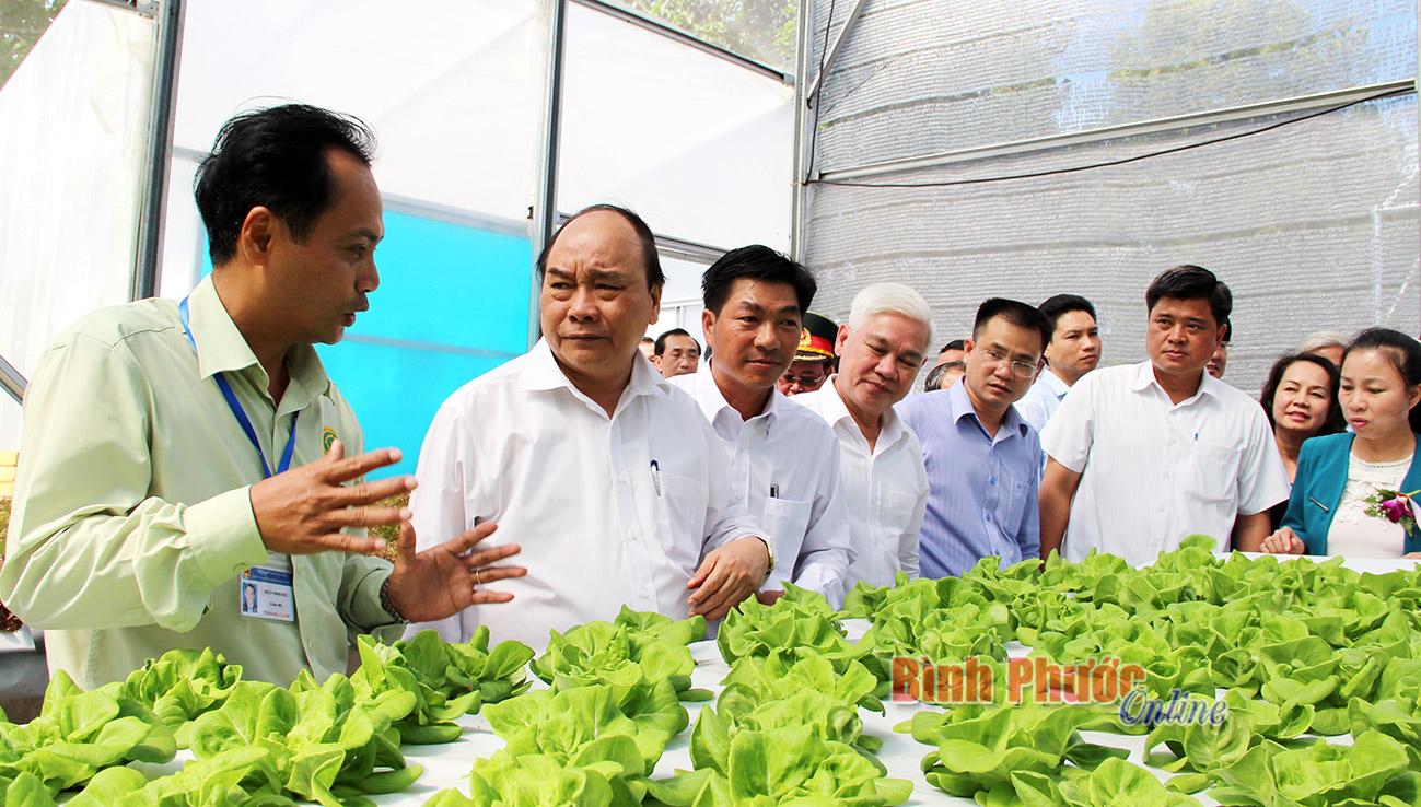 PM attends 20th anniversary of Binh Phuoc's reestablishment