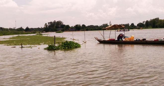 Bauern im Mekong-Delta bei der Anpassung an fehlende Überschwemmungen