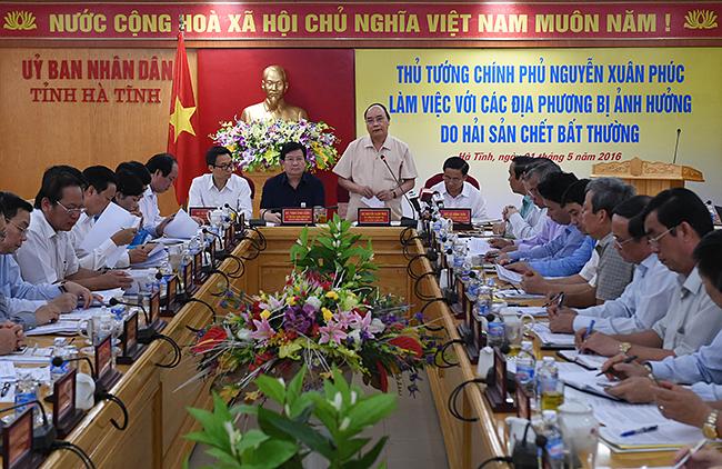 Yêu cầu xử lý kiên quyết các tổ chức, cá nhân trong sự cố môi trường tại miền Trung