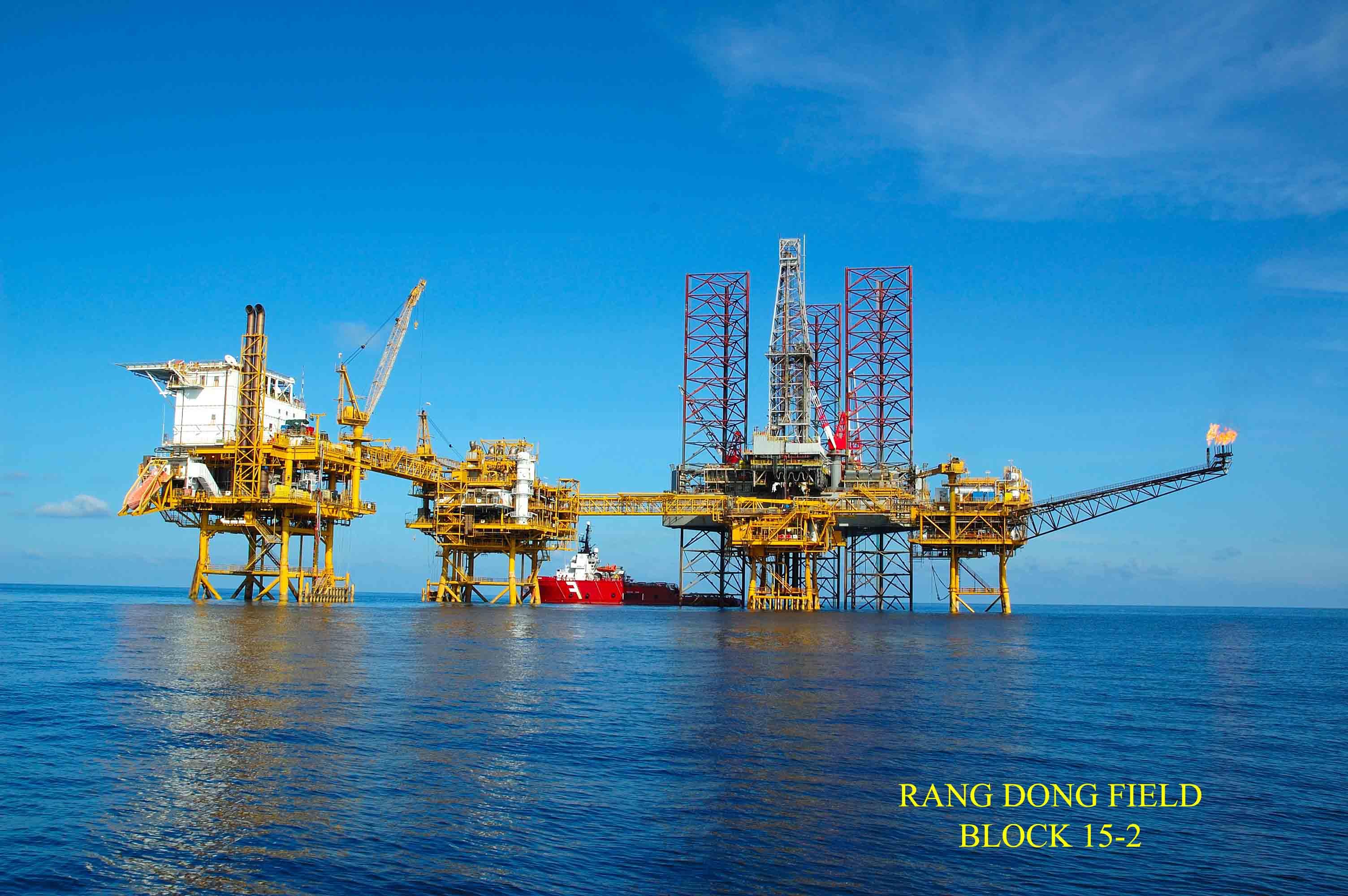Phó Thủ tướng Trịnh Đình Dũng dự Hội nghị tổng kết công tác năm 2016 của Tập đoàn dầu khí