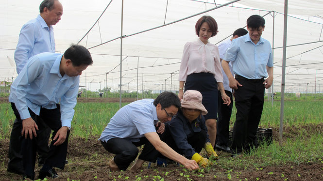 Phó Thủ tướng Vũ Đức Đam kiểm tra công tác đảm bảo an toàn thực phẩm tại Bắc Ninh