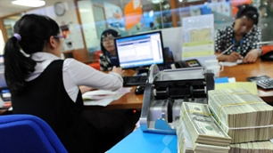 Vietnam pursues tight monetary policy