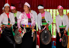 Muong ethnic people honor Mother of Saint Tan Vien