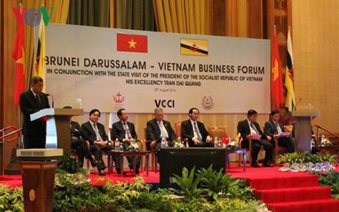 President Tran Dai Quang attends Vietnam-Brunei Business Forum