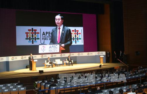 APEC 2017 confirms Vietnam's stature