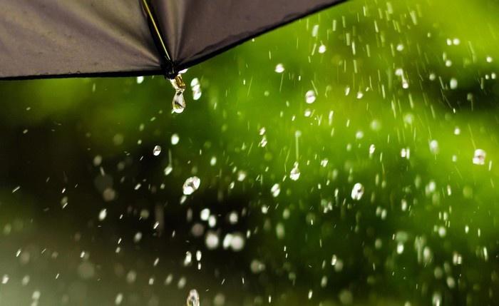 听雨的歌唱