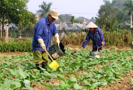 Comuna de Tuy Loc promueve éxitos de la renovación rural