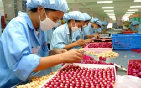 Destacan papel del sector privado para promover la macroeconomía