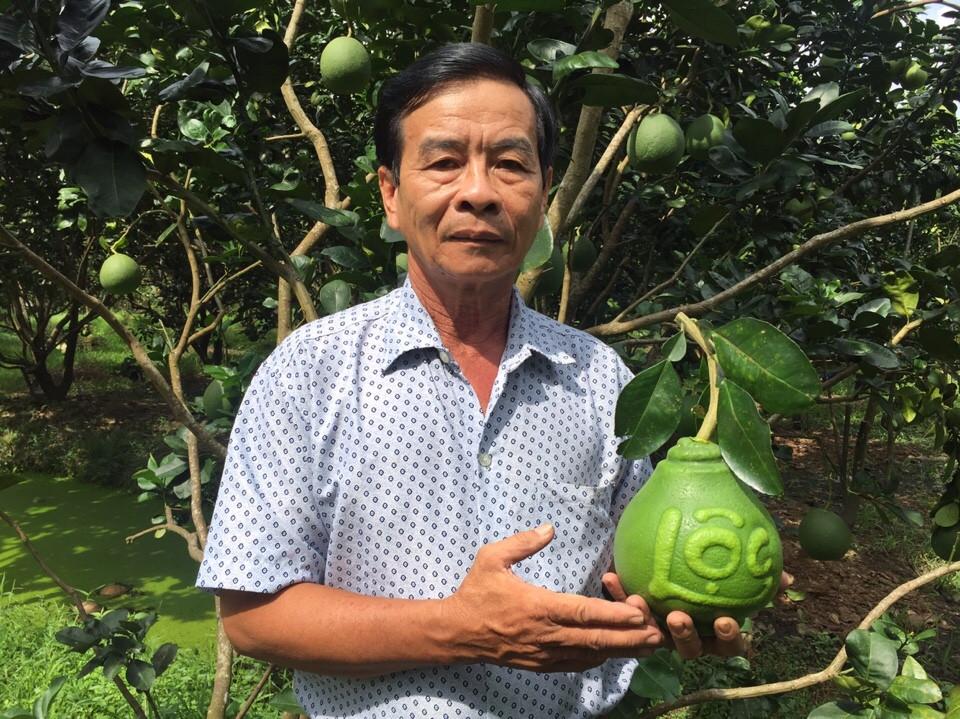 Una visita a la cuna de frutas singulares para el Tet vietnamita