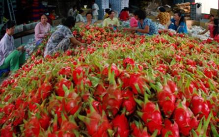 Vietnam por incrementar exportaciones de frutas y vegetales