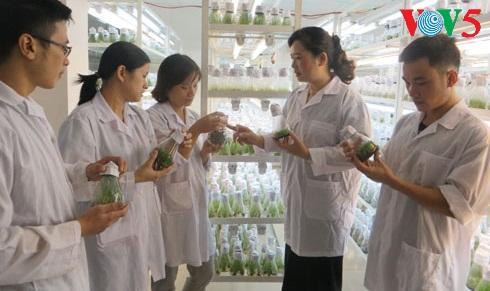 Investigadoras vietnamitas apasionadas de la ciencia