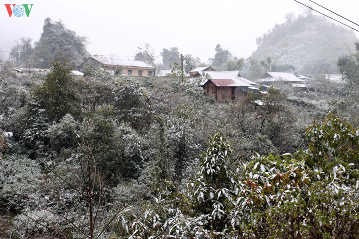 Meseta de Sin Ho, una belleza natural de la región del noroeste de Vietnam