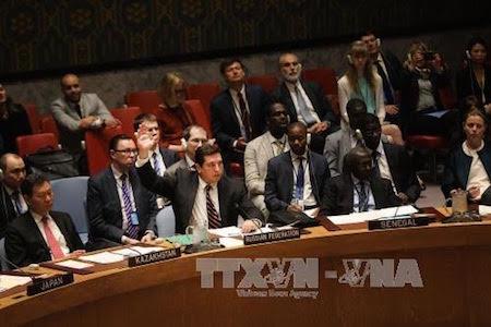 Rusia veta proyecto de resolución sobre Siria en Consejo de Seguridad de la ONU