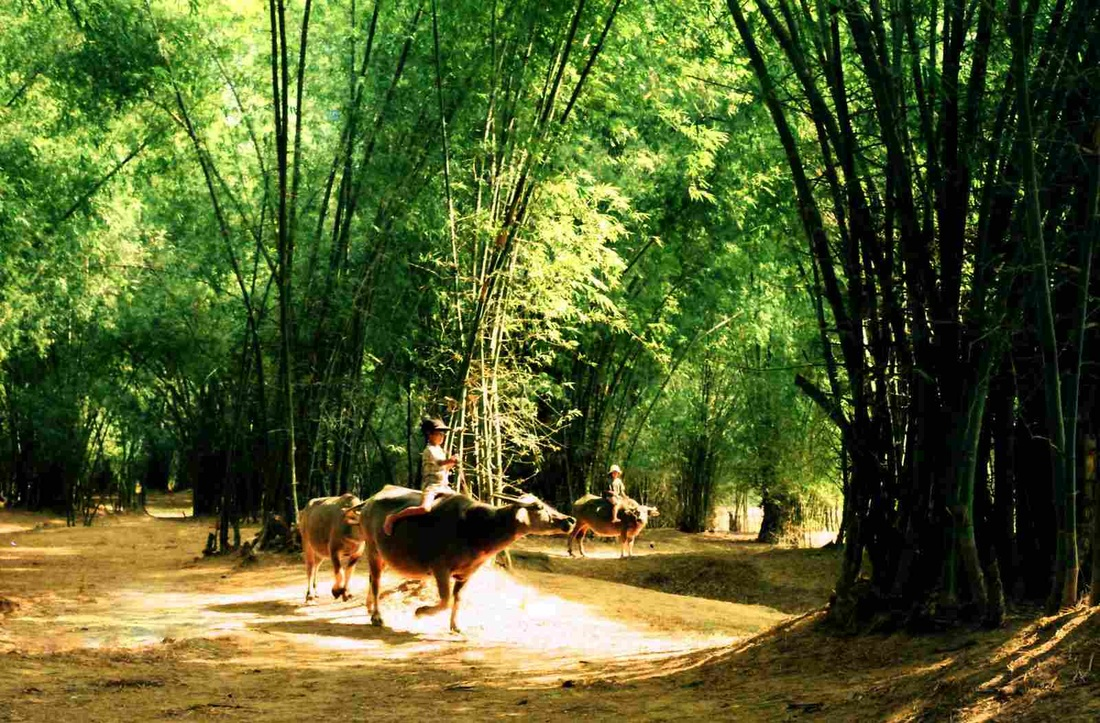 Struktur khas desa tradisional Vietnam