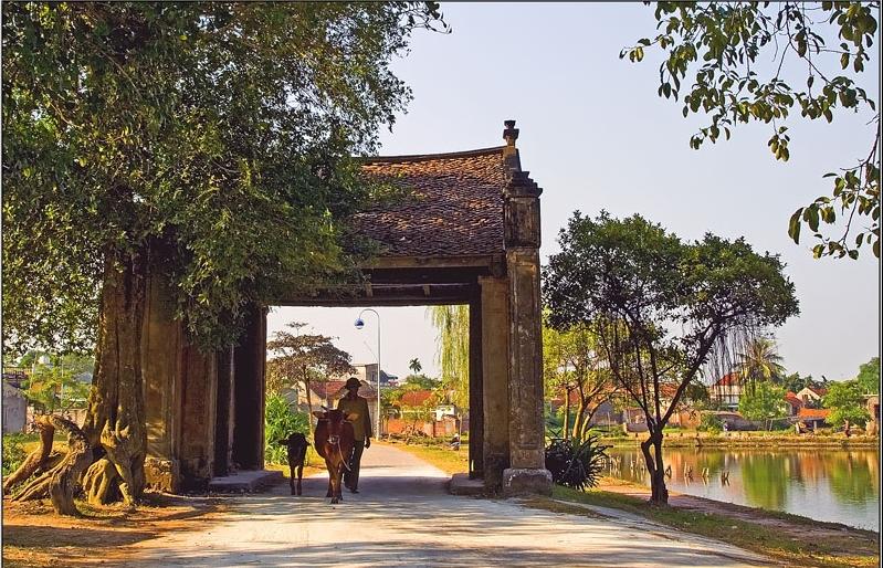 Struktur dan organisasi ruang hidup dari desa Vietnam