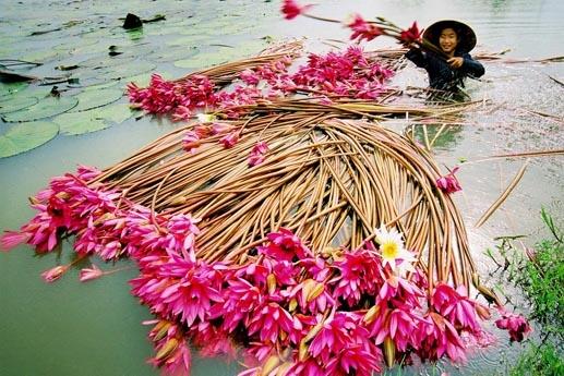 同塔梅洪水季的生活节奏