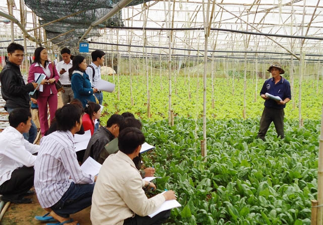 越南农业:明确挑战促增长