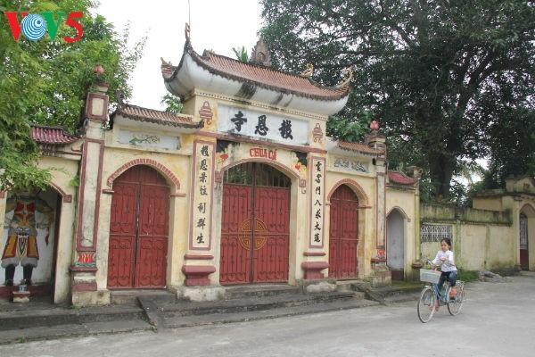 越南北部平原乡村的特征