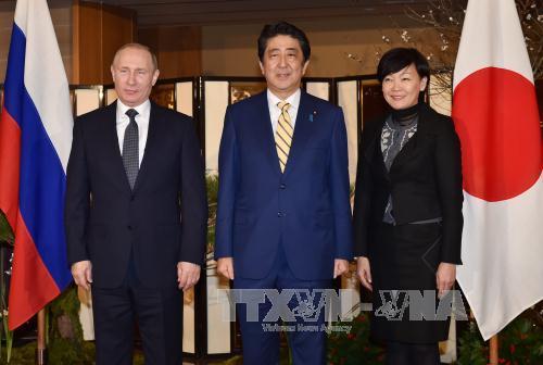 Japan, Russia discuss joint economic activities on disputed islands
