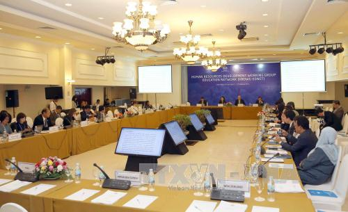 Working groups and APEC Sub-Committees continue meetings