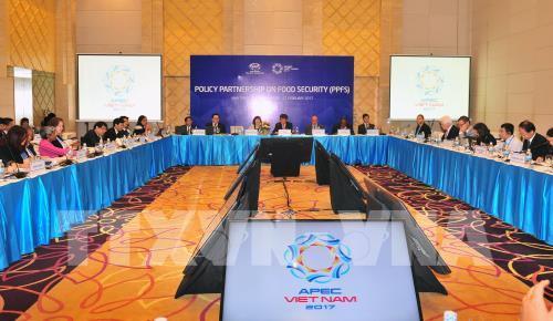 APEC ưu tiên về an ninh lương thực và nông nghiệp thích ứng với biến đổi khí hậu