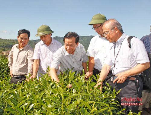 Tăng cường hợp tác đầu tư giữa các doanh nghiệp Nhật Bản và địa phương Việt Nam
