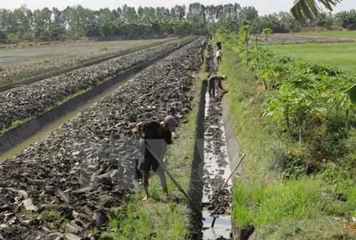 Nông dân đồng bằng sông Cửu Long thích ứng với mùa không lũ