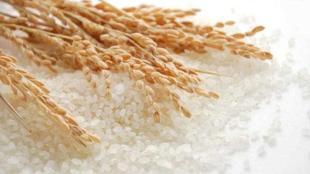 Việt Nam tiếp tục bán 1,5 triệu tấn gạo mỗi năm cho Philipines