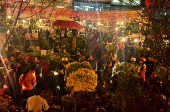 ตลาดดอกไม้กลางคืนกว๋าง บ๊า กลางเมืองหลวงฮานอย