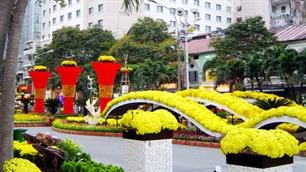 Tet tours for Overseas Vietnamese