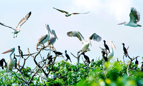 Национальный парк Суантхюи