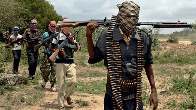 Niger kills 12 Boko Haram gunmen