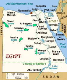 Russia opens new consulate in Egypt's Hurghada