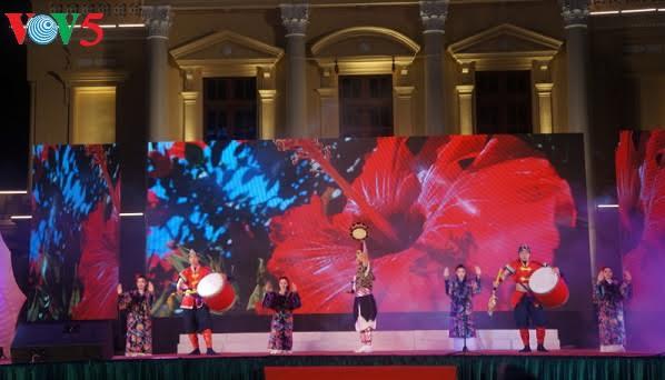 Hai Phong hosts Vietnam-Japan cultural exchange festival